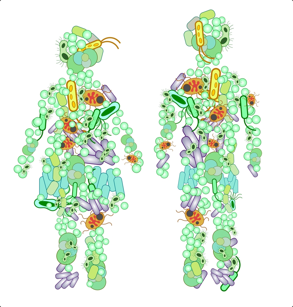 What is the microbiome? Why is it relevant to FASD?